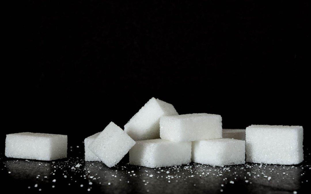 AR006| Zucker ist eine kleine Bitch